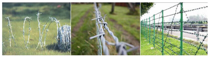 Barbed-Wire-fence-Oxbow-service-trip
