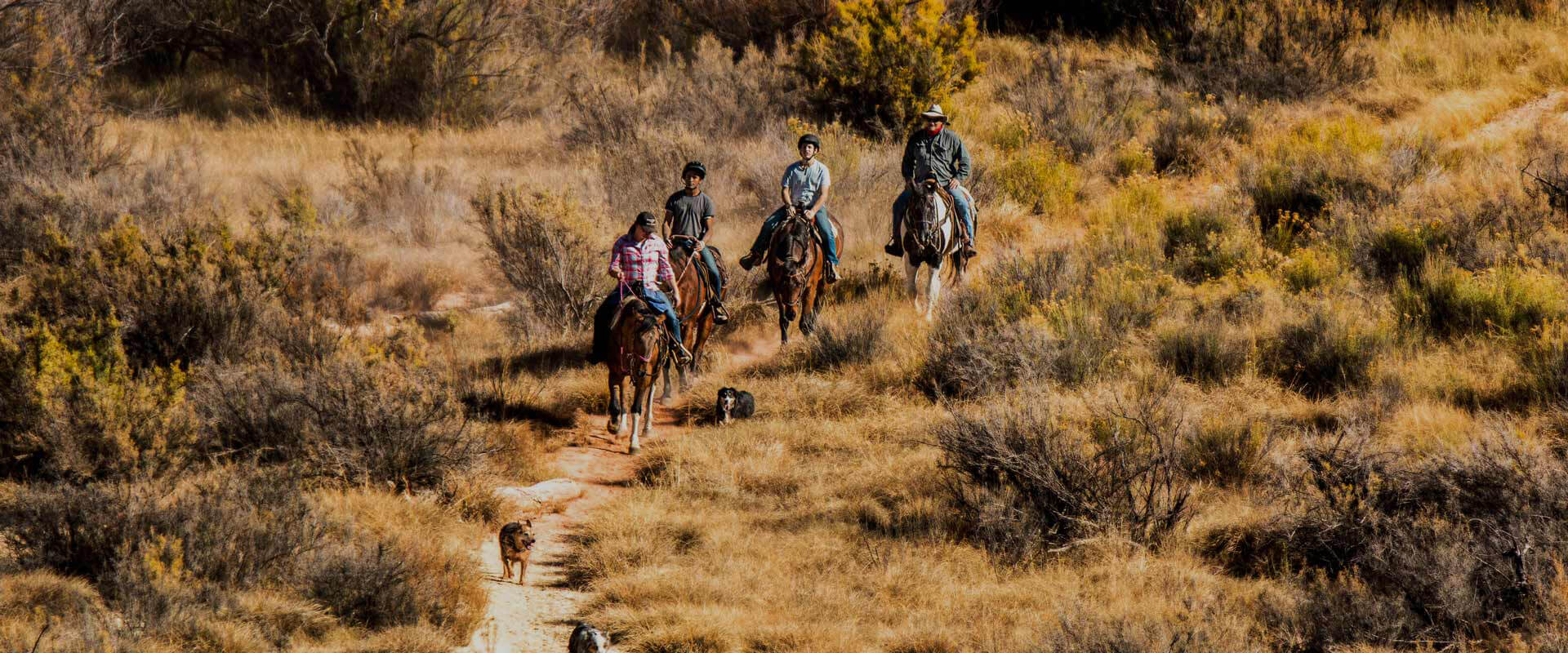Individual-Therapy-trail-ride