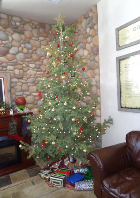 Oxbow-Decorated-Tree