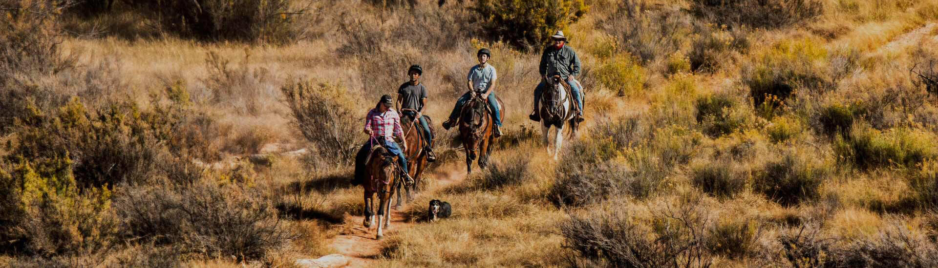 Oxbow-Individual-Therapy-trail-ride