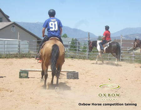 Oxbow-horse-competition