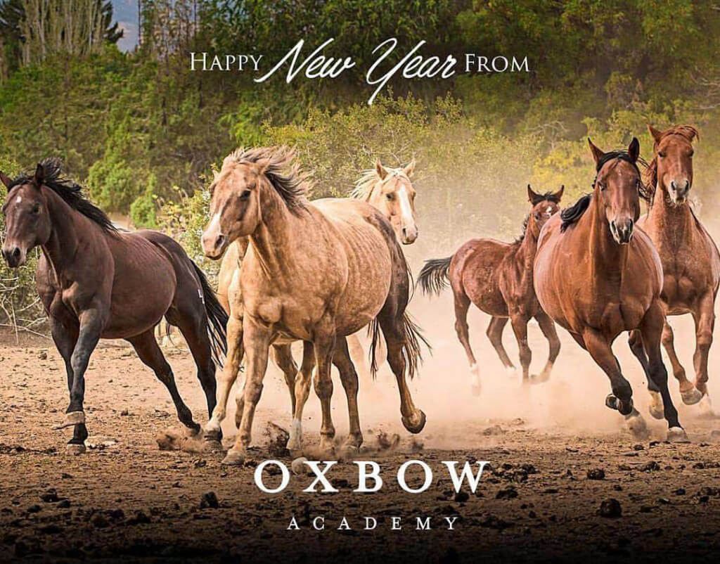 Happy new year from Oxbow Academy